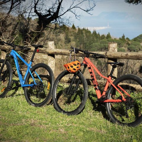 Escursione Mountain Bike Peloritanii 3